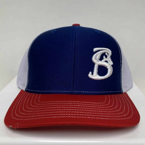 RED, WHITE, AND BLUE SNAPBACK